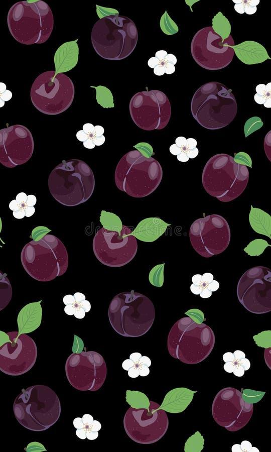Fresh purple plum seamless pattern with white cherry blossom on black background royalty free illustration