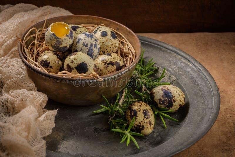 Fresh quail eggs stock images