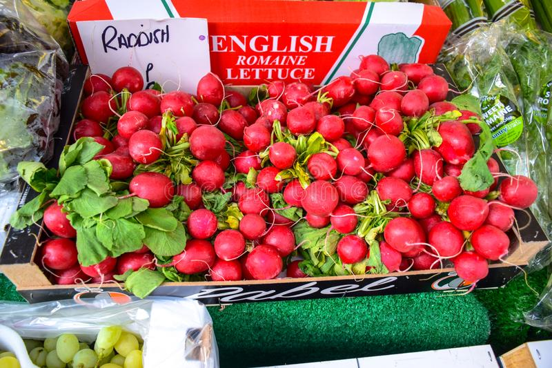 Fresh raddish selling at Portobello Market in Portobello Road, Notting Hill, UK royalty free stock photos