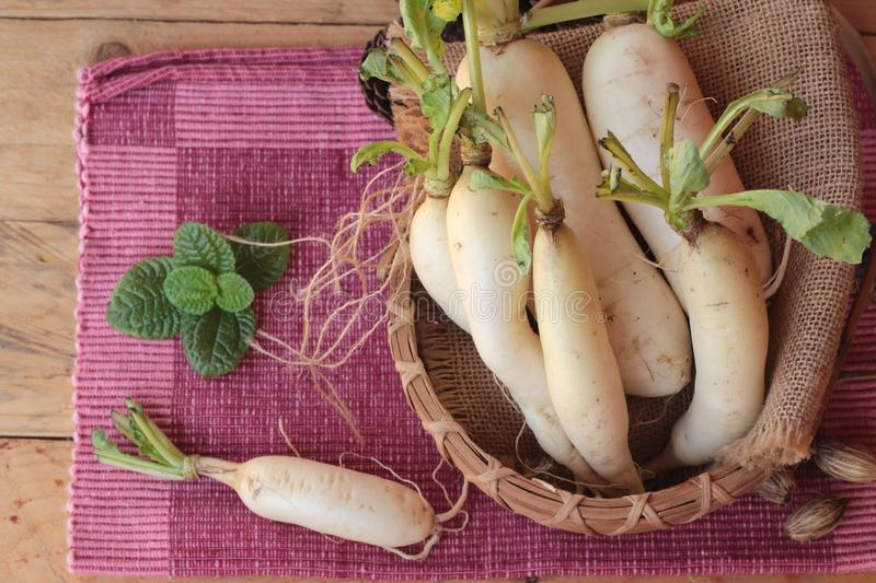Fresh radish and pickled radish for cooking. royalty free stock image