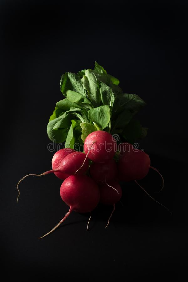 Fresh radishes on black background. royalty free stock images