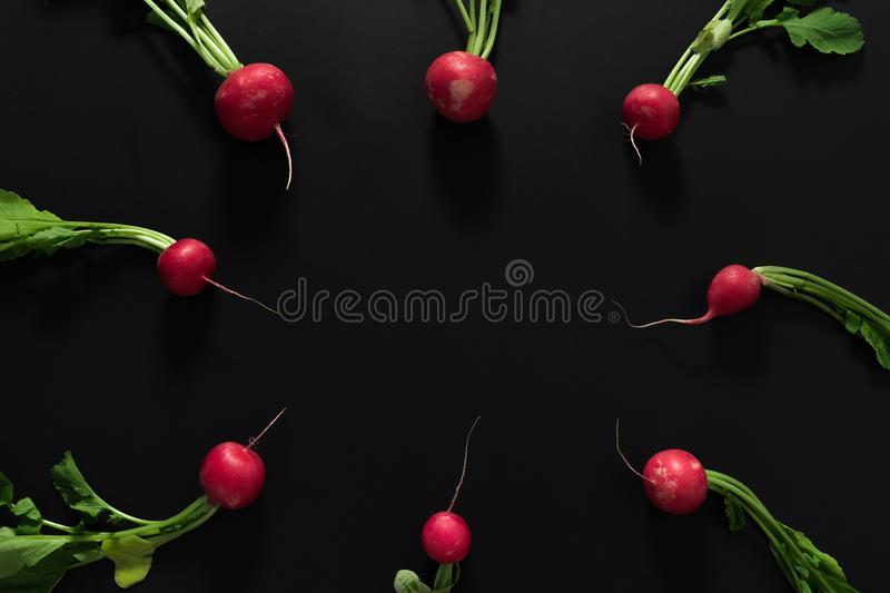 Fresh radishes on black background. stock photos