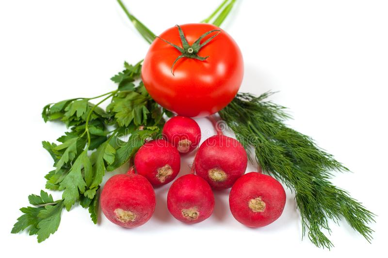 Fresh radishes, green dill, parsley and red tomato isolated on white background. Salad composition. Healthy food conception royalty free stock photos