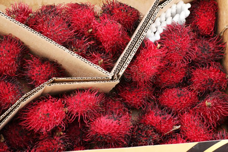 Fresh rambutan fruit. In a box in the supermarket stock photo