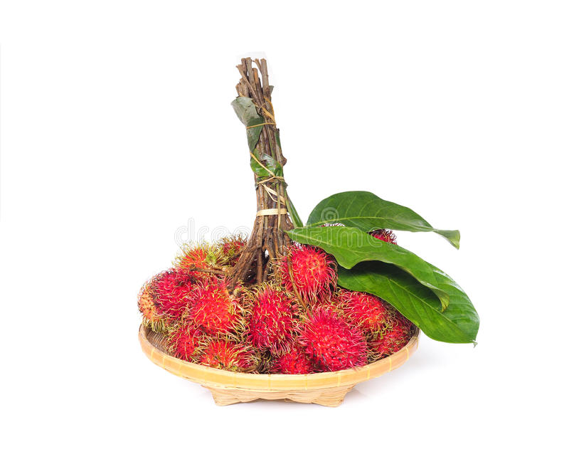 Fresh rambutan fruit with green leaves in bamboo basket stock photography