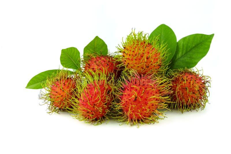 Fresh rambutan fruit with leaf. On white background royalty free stock photos