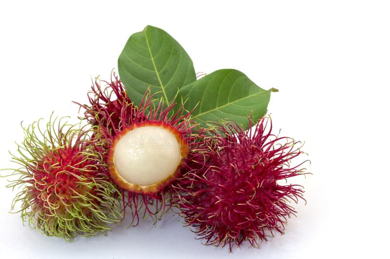 Fresh Rambutan with green leaves isolated on white background royalty free stock images