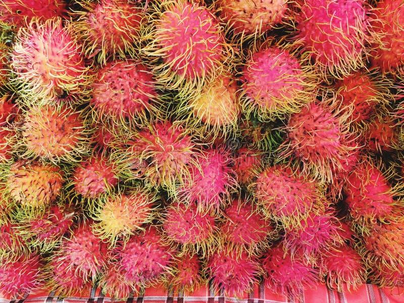 The fresh rambutan from the market. Fruit, steamed, mackerel, fish, thailand stock image