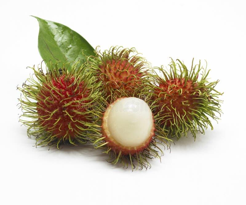 Fresh rambutan. Thai fruit closeup royalty free stock photos