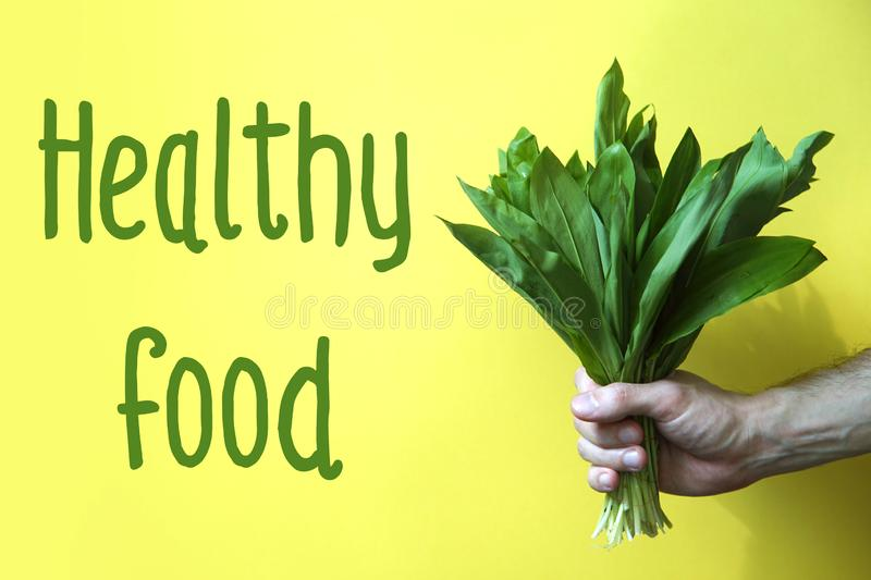 Fresh ramson in hand. Concept of Healthy food. Man hand holding fresh ramson. Yellow background royalty free stock images