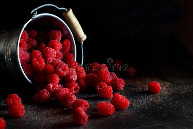 Fresh raspberries in a bucket royalty free stock photos