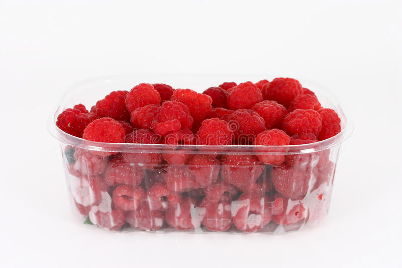 Fresh raspberries in plastic container royalty free stock image