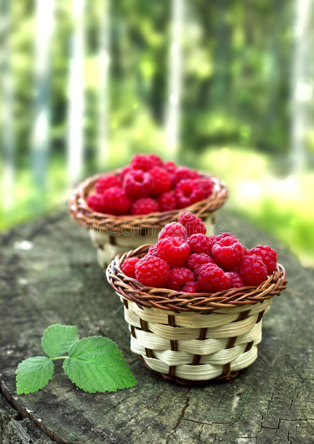 Free Fresh Raspberry Royalty Free Stock Photography - 32874277