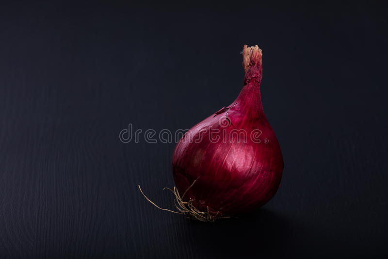 Fresh raw aromatic red onion.  royalty free stock images