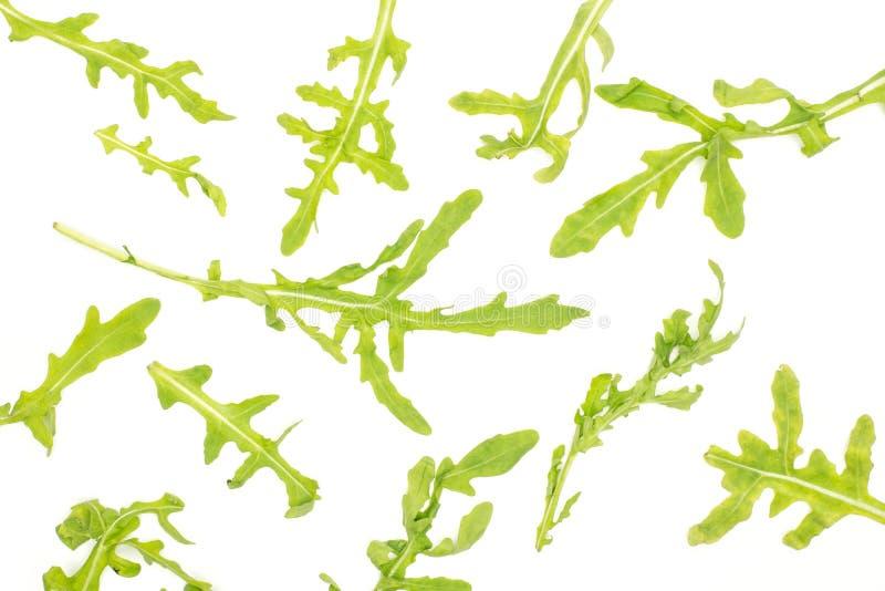 Fresh Raw Arugula Rucola isolated on white. Fresh arugula leaves top view isolated on white background stock images