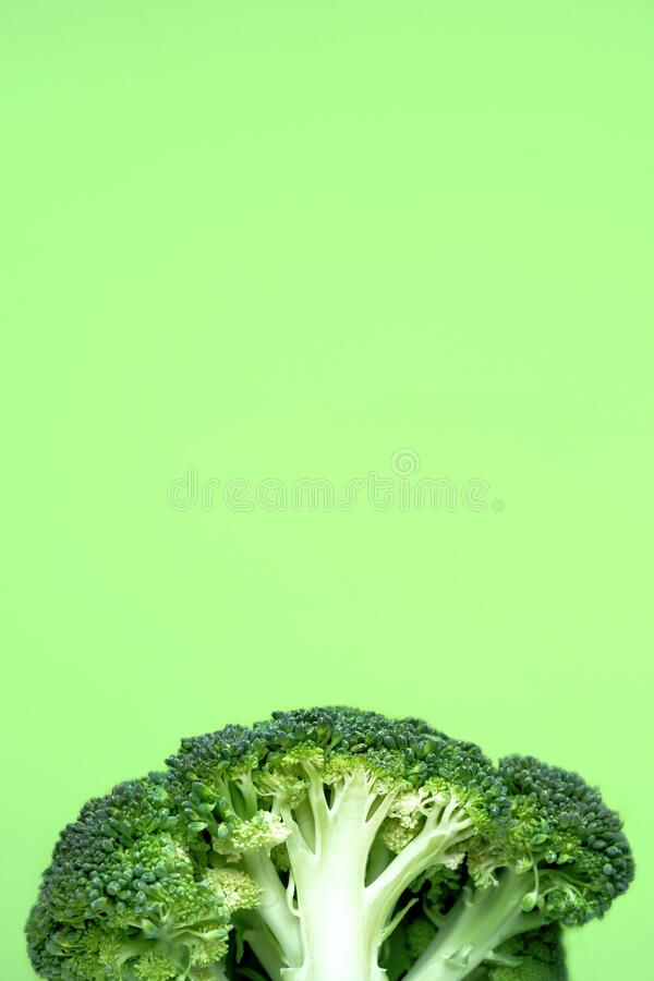 Fresh raw broccoli half on a green background. Abstract vegetable background, banner, cabbage texture details, close-up. Vertical top view, flat lay with copy royalty free stock image