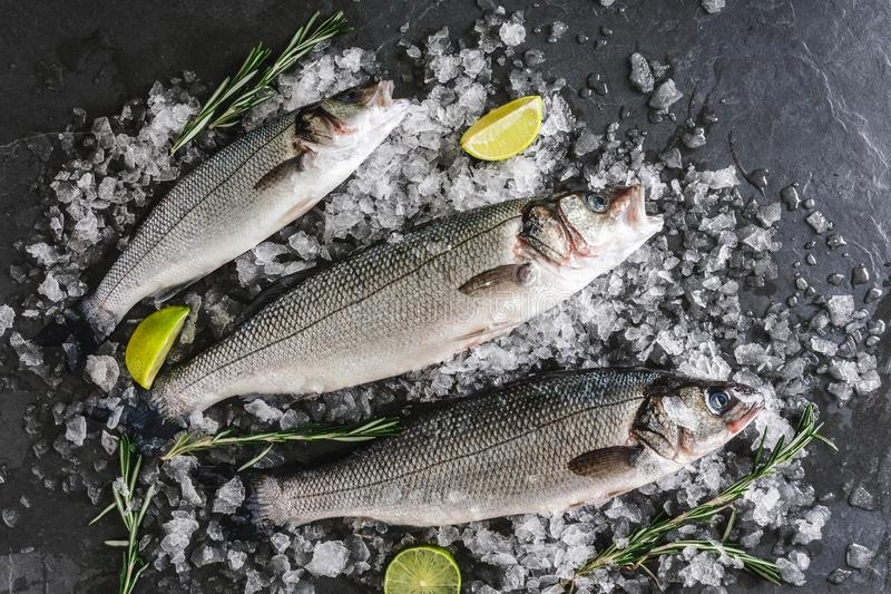 Fresh raw carp fishes with spices, lemon, rosemary on ice over dark stone background. Creative layout made of fish, top view royalty free stock photography