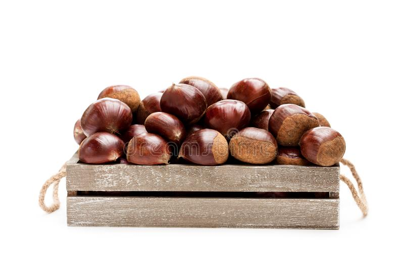 Fresh raw chestnuts in a wooden box isolated on white backgroun. D stock photo