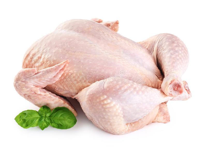 Fresh raw chicken and basil stock images