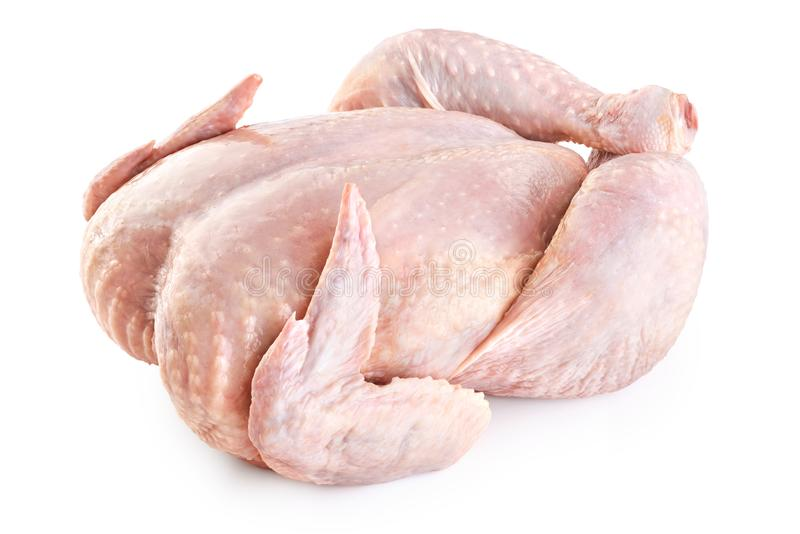 Fresh raw chicken on white background. stock photography
