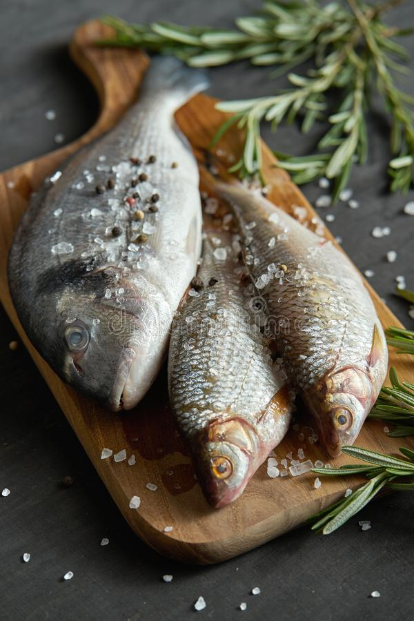 Fresh raw dorada fish on a wooden board with a sprig of rosemary on a black table. Three fresh raw dorada fish on a wooden board with a sprig of rosemary on a royalty free stock photos