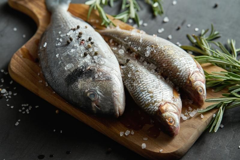 Fresh raw dorada fish on a wooden board with a sprig of rosemary on a black table. Three fresh raw dorada fish on a wooden board with a sprig of rosemary on a stock photos