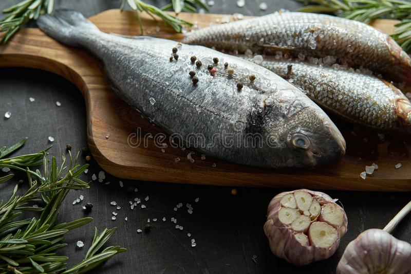 Fresh raw dorada fish on a wooden board with a sprig of rosemary and garlic on a black table. Three fresh raw dorada fish on a wooden board with a sprig of royalty free stock images