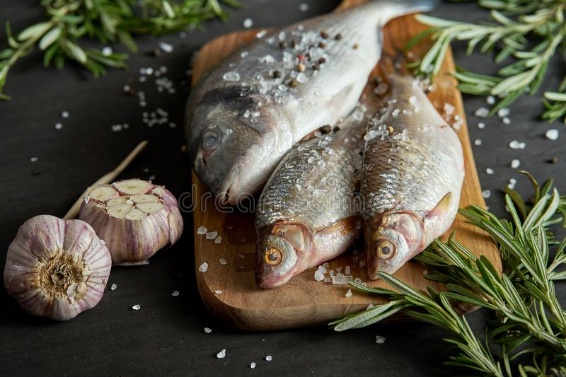 Fresh raw dorada fish on a wooden board with a sprig of rosemary and garlic on a black table. Three fresh raw dorada fish on a wooden board with a sprig of royalty free stock photography