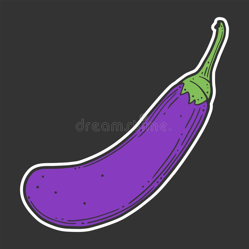 Fresh raw eggplant. Vector concept in doodle and sketch style. Hand drawn illustration for printing on T-shirts, postcards. Icon and logo idea, white stock illustration