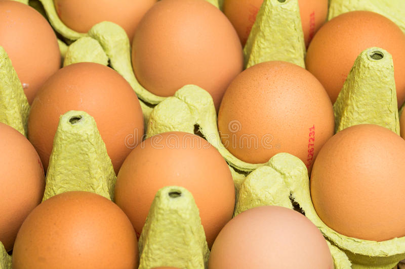 Fresh raw eggs. Freerange fresh raw eggs in recycled paper egg cartons or on the straw stock photography