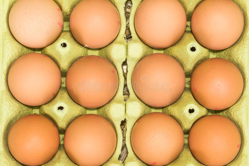 Fresh raw eggs. Freerange fresh raw eggs in recycled paper egg cartons or on the straw royalty free stock photography
