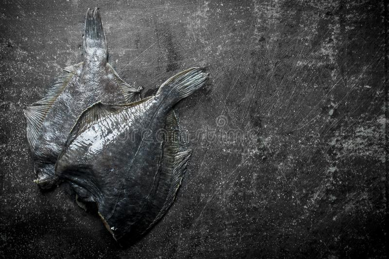 Fresh raw fish flounder. On dark rustic background royalty free stock image