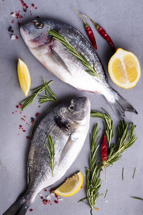 Fresh raw fish royalty free stock photo