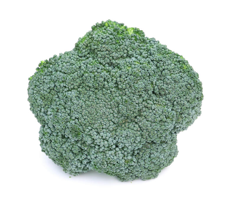 Fresh Raw Green Broccoli royalty free stock photography