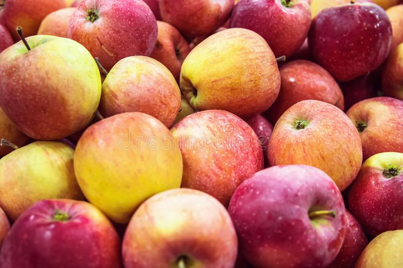 fresh raw lot of green red apples on counter stock photos