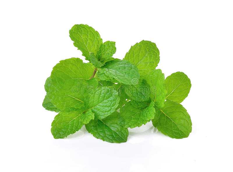 Fresh raw mint leaves isolated on white background. Healty , Beaty care ,food ,Deliciousen stock photo