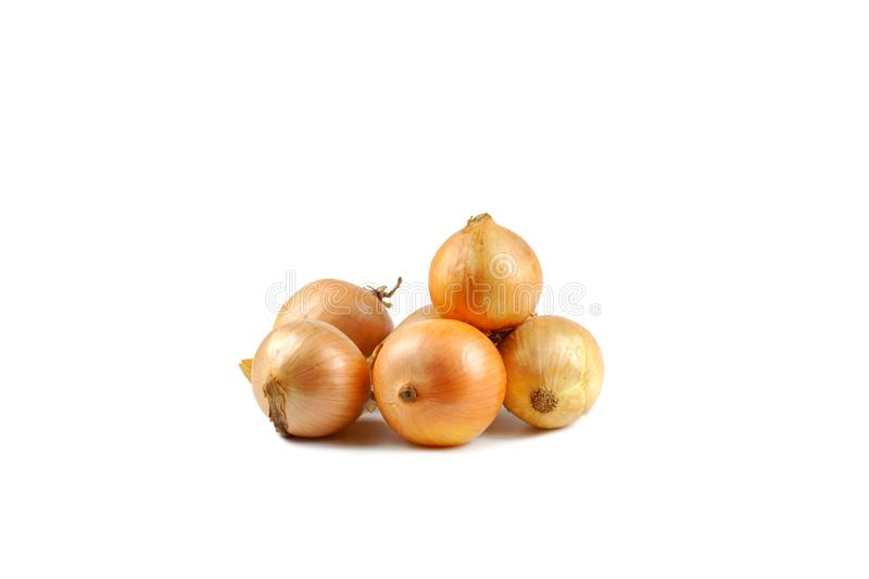 Fresh raw onions isolated on white background royalty free stock images