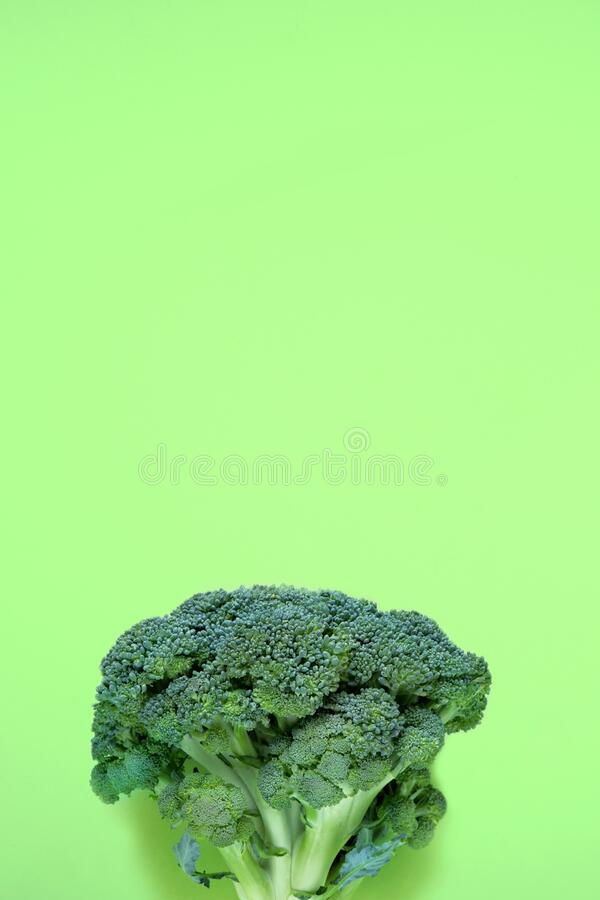 Fresh raw organic broccoli on a green background. Abstract vegetable background, banner, cabbage texture details, close-up. Vertical top view, flat lay with royalty free stock photos