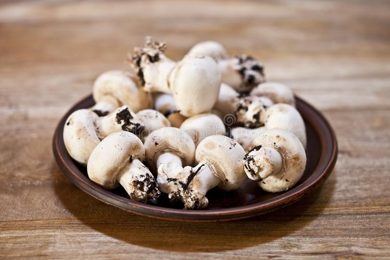 Fresh raw organic champignons on brown ceramic plate on wooden table stock images