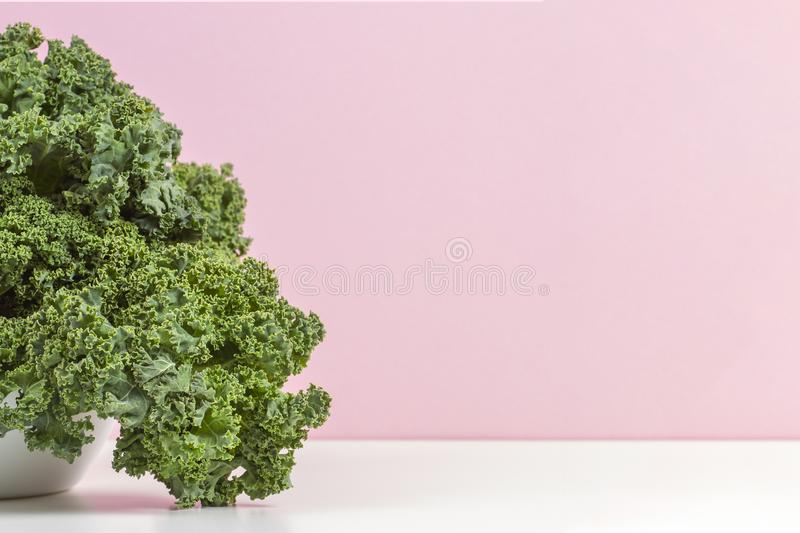 Fresh raw organic green curly kale leaves of kale on white plate with pink background stock images