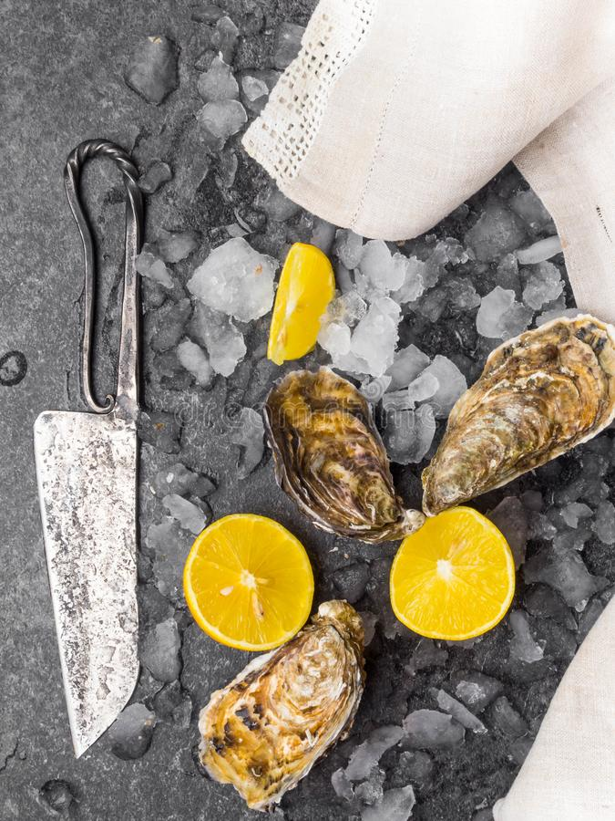 Fresh raw oysters on ice with lemon slices, mollusk of the Atlantic Ocean on linen towel, knife. Fresh raw oysters on ice with lemon slices, mollusk of the royalty free stock image