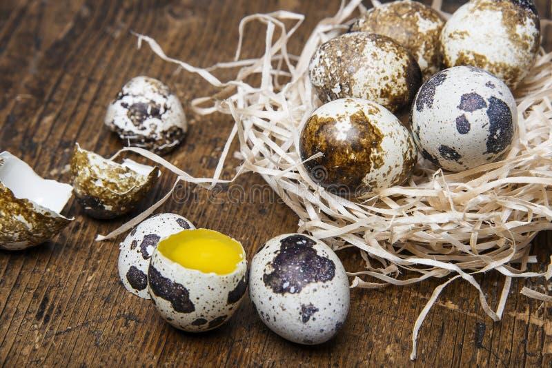 Fresh raw quail eggs. Fresh quail eggs on a wooden table stock image