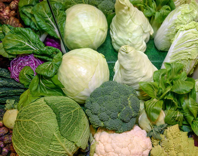 Fresh raw ruciferous vegetables. Savoy cabbage, red cabbage, broccoli, cauliflower, chinese cabbage, kohlrabi, romanesco broccoli. Concept of healthy eating royalty free stock images