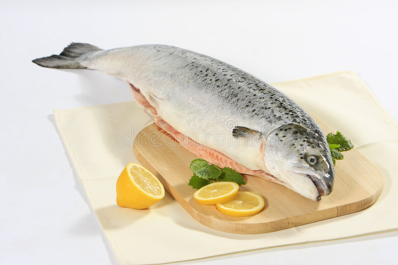 Fresh raw salmon royalty free stock image