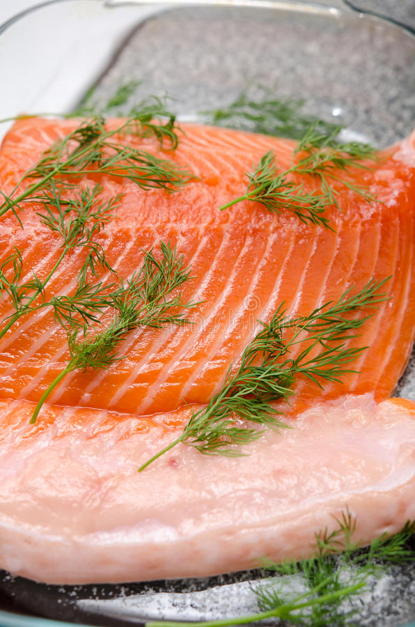 Fresh raw salmon and dill. Large file of raw salmon garnished with dill in yena tray royalty free stock photography
