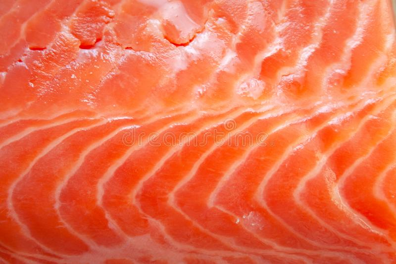 Fresh raw salmon fish textured fillet detail royalty free stock photo