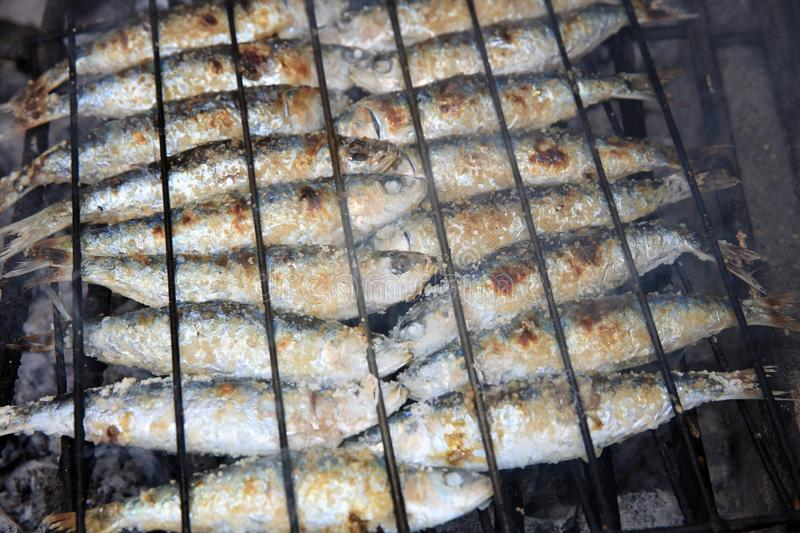 Fresh raw Sardines prepared on the charcoal Grill royalty free stock photography