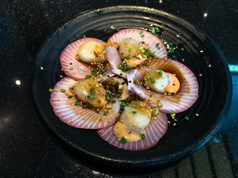 Fresh raw scallops in shell on a black dish royalty free stock image