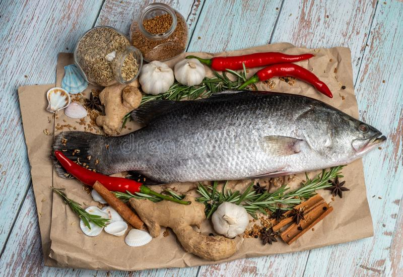 Fresh Raw Sea Bass on wooden table surrounded by fresh ingredients and spices.  royalty free stock photography