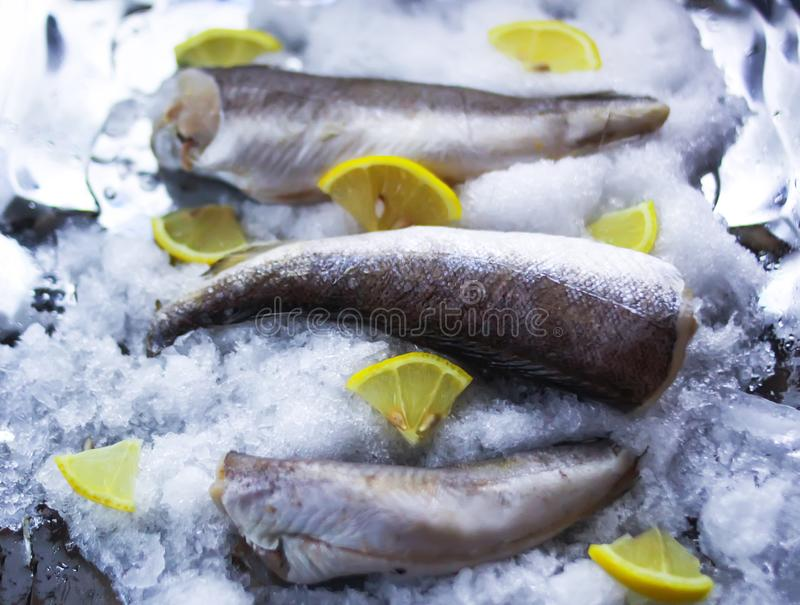 Fresh sea fish and lemon peces on ice surface. Fresh raw sea fish and lemon peces on ice surface stock images